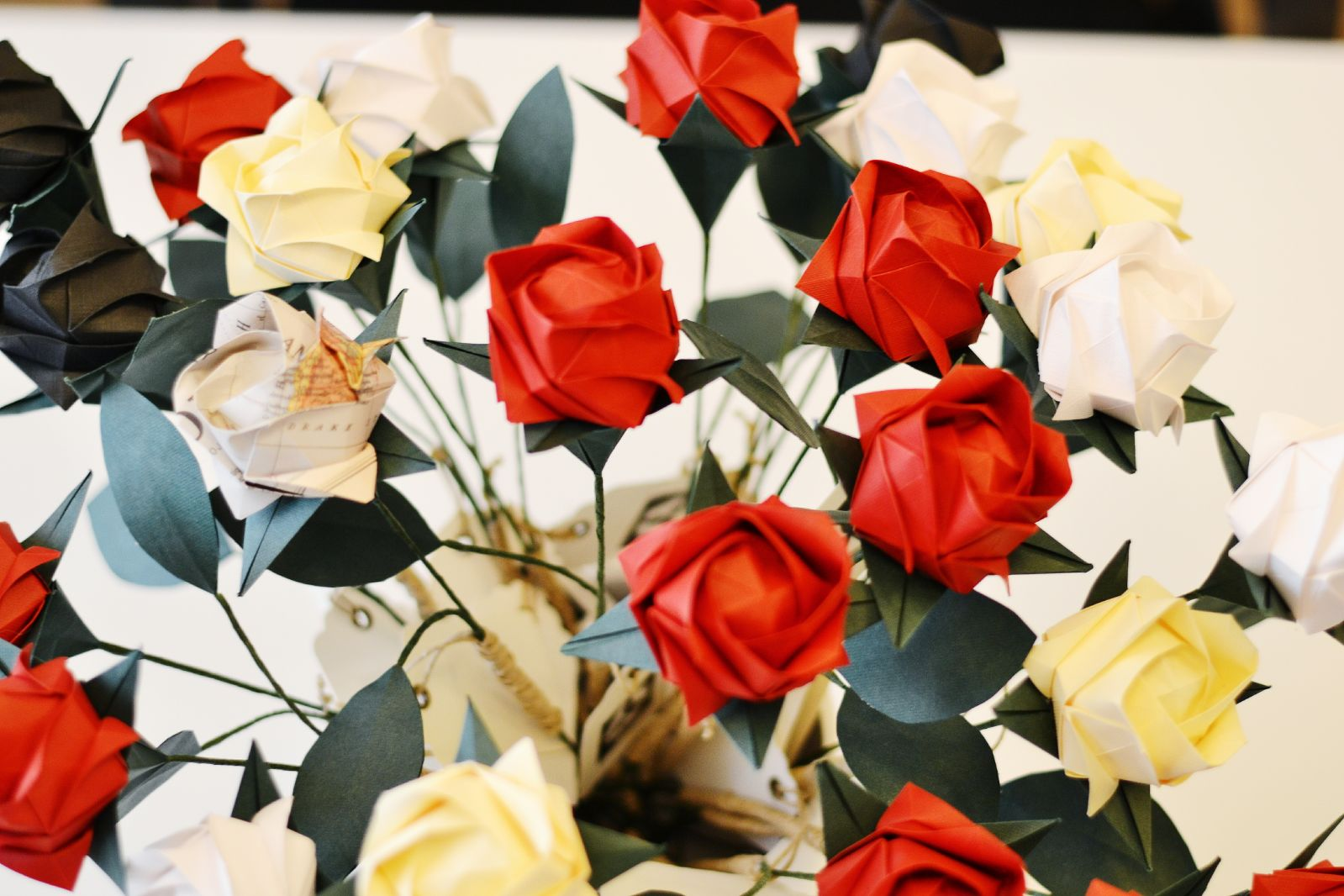 Per Sant Jordi regala l'única rosa que dura per sempre