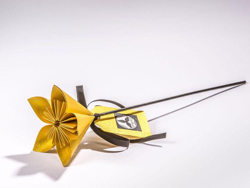 Flor Mizūmi daurat