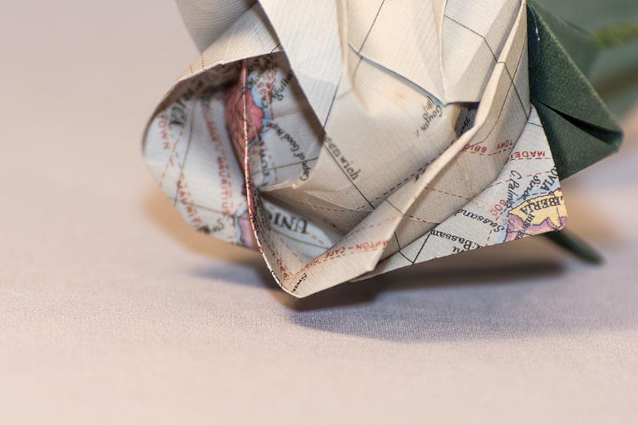 Rosa Akashi mapa gris